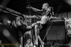 Predatory MMA